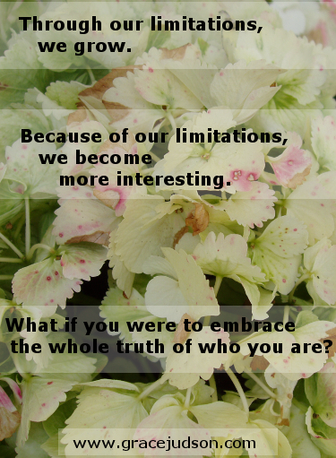 Limitations meme on hydrangea photo