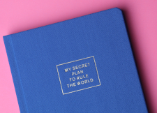 "Blue book on a pink background; book's title is ""My Secret Plan to Rule the World"""